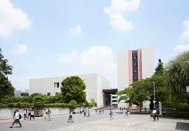 【駒澤大学】志願者数と合格者数・倍率の推移についてまとめてみた!